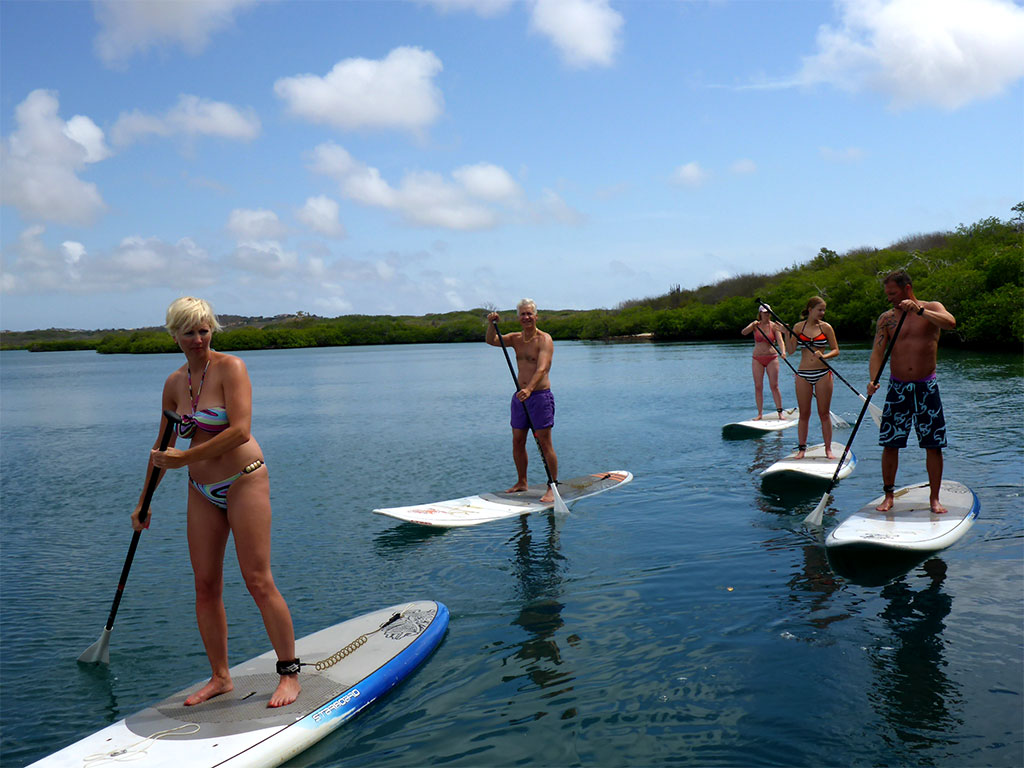 Fun on the SUP during the Mangrove ECO Tour